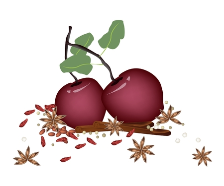 A Traditional Christmas Food of Delicious Red Christmas Apples with Cinnamon Sticks and Anise for Christmas Celebration. Vector