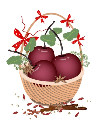 A Traditional Christmas Food of Delicious Red Christmas Apples with Cinnamon Sticks and Anise on A Beautiful Wicker Basket for Christmas Celebration. Vector