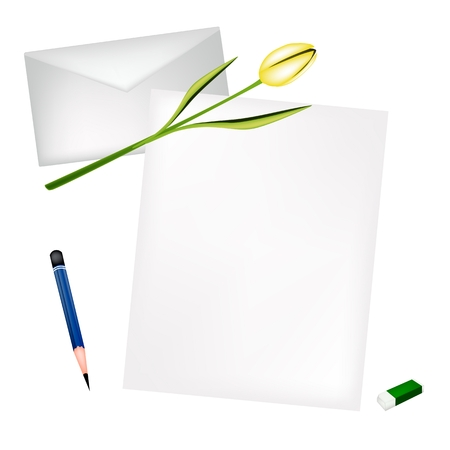 sharpened: A Sharpened Pencil, Eraser and Beautiful Yellow Tulip Laying on Blank Paper and Envelope. Illustration