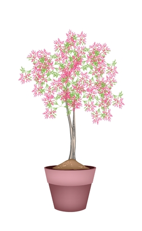 Illustration of Landscaping Tree Symbol or Isometric Tree and Plant of Beautiful Pink Flower in A Terracotta Flowerpot, for Garden Decoration Vector