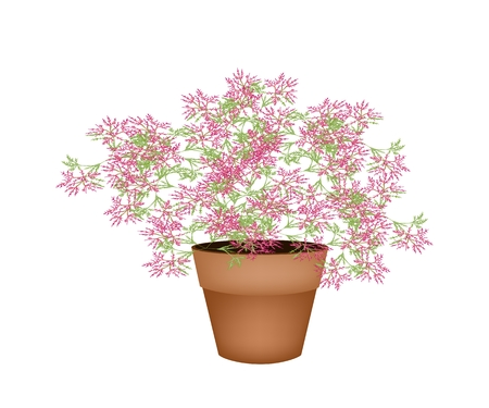flowerpot: Illustration of Landscaping Tree Symbol or Isometric Tree and Plant of Beautiful Pink Flower in A Brown Terracotta Flowerpot, for Garden Decoration Illustration