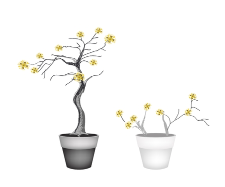 Flower and Plant, Illustration of Landscaping Tree Symbols or Isometric Trees and Plants with Yellow Flower for Garden Decoration.