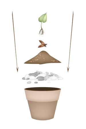 potting soil: Tree Planting Steps, Illustration of Ceramic Flower Pots with Potting Soil, Fertilizer, Seeds and Young Plant for Growing Plants, Herbs and Vegetables. Illustration