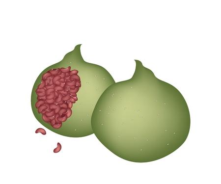 japanese dessert: Japanese Traditional Dessert, Kusa Mochi or Yomogi Mochi Made From Mochi and Leaves of Japanese Mugwort or Hahagohusa Filled with Red Bean paste. Illustration