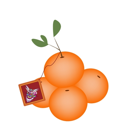 mandarin orange: Traditional Chinese, Illustration of Mandarin Orange with Red Fortune Card for Chinese New Year Celebration.