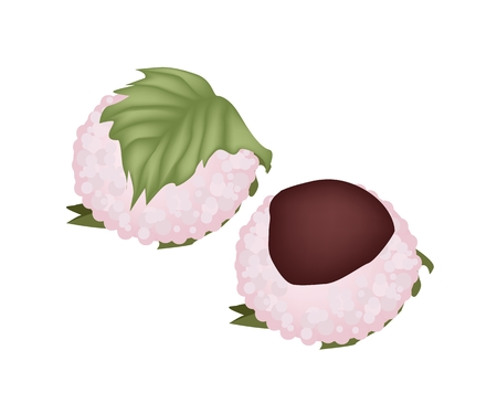matsuri: Japanese Traditional Sweets for Spring, Sakura Mochi or Rice Cake Filled with Red Bean Paste Wrapped in Preserved Cherry Leaf.