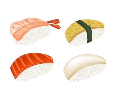 egg roll: Japanese Cuisine, Illustration of Fresh Salmon Sushi, Tako Sushi, Ebi Sushi and Tamagoyaki Nigiri Isolated on White Background.