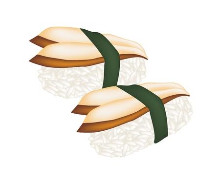 eel: Japanese Cuisine, Illustration of Delicious Unagi Sushi or Smoked Eel Sushi with Sauced Isolated on White Background.