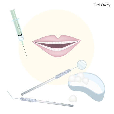 dental treatment: Medical Concept, Illustration of Dentist Tools for Dental Treatment and Oral Cavity.