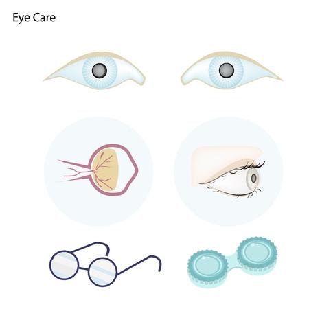 lentes contacto: Oftalmolog�a Concepto, Ilustraci�n de tomar el cuidado de los ojos con gafas y lentes de contacto.