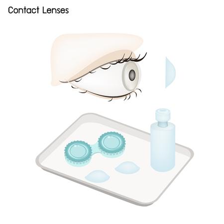コンセプトは眼科、コンタクト レンズ、コンテナーおよびソリューションの瓶が付いている目の世話のイラスト。