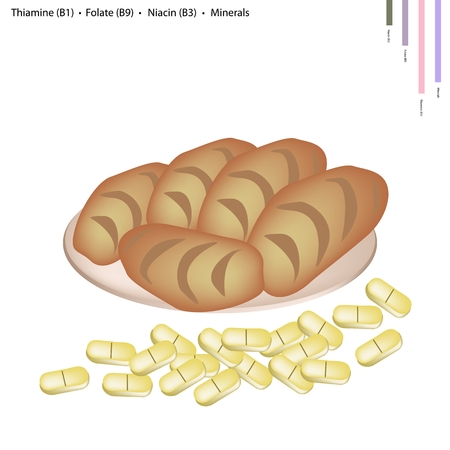 folate: Healthcare Concept, Illustration of Bread with Thiamine B1, Folate B9, Niacin B3 and Minerals Tablet, Essential Nutrient for Life. Illustration