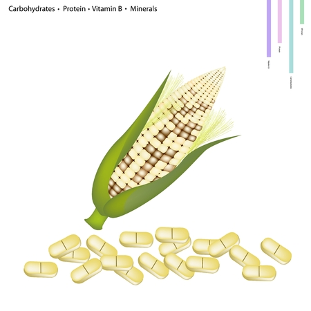 carbohydrates: Healthcare Concept, Illustration of Corn Crop with Carbohydrates, Protein, Vitamin B and Minerals Tablet, Essential Nutrient for Life.
