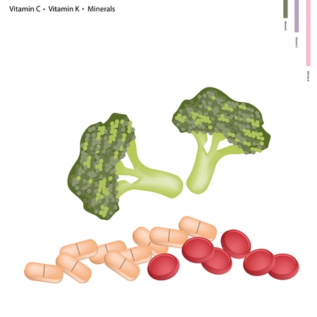 Healthcare Concept, Illustration of Broccoli with Vitamin C, Vitamin K and Minerals Tablet, Essential Nutrient for Life. Vector