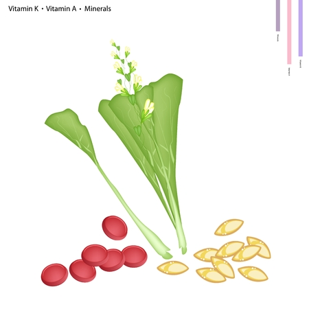 flowering: Healthcare Concept, Illustration of Chinese Flowering Cabbage with Vitamin K, Vitamin A and Minerals Tablet, Essential Nutrient for Life.