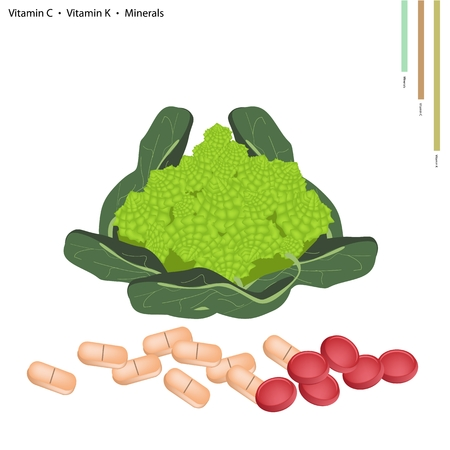 Healthcare Concept, Illustration of Romanesco Broccoli with Vitamin C, Vitamin K and Minerals Tablet, Essential Nutrient for Life.