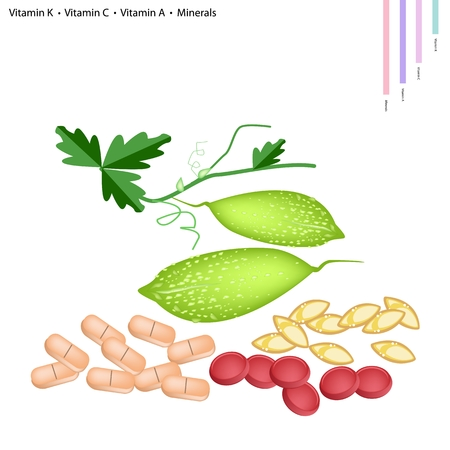 balsam: Healthcare Concept, Illustration of Balsam Pear or Bitter Gourd with Vitamin K, Vitamin C, Vitamin A and Minerals Tablet, Essential Nutrient for Life. Illustration