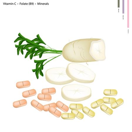 dikon: Salud Concepto, Ilustración de Daikon con la vitamina C, ácido fólico o B9 y Minerales de la tableta, nutriente esencial para la vida.