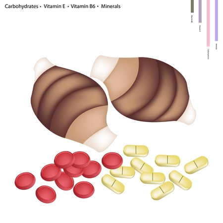 carbohydrates: Healthcare Concept, Illustration of Taro Root with Carbohydrates, Vitamin E, Vitamin B6 and Minerals Tablet, Essential Nutrient for Life. Illustration