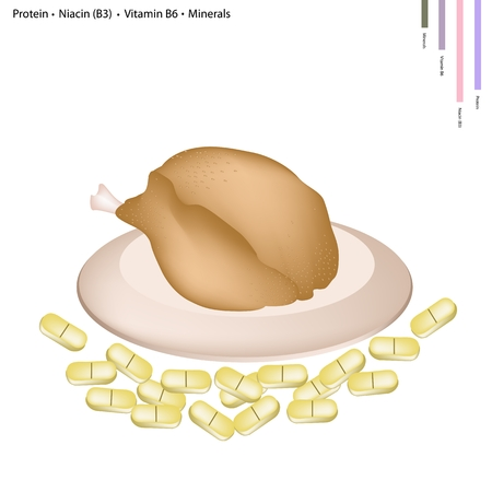 garnished: Healthcare Concept, Illustration of Roast Chicken with Protein, Niacin or Vitamnin B3, Vitamnin B3 and Minerals, Essential Nutrient for Life.