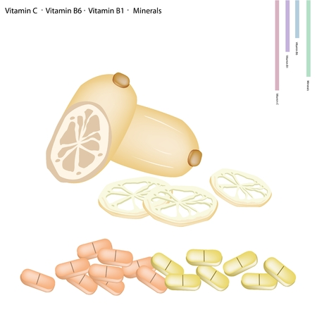 b1: Healthcare Concept, Illustration of Lotus Roots or Water Lily Roots with Vitamin C, Vitamin B6, Vitamin B1 and Minerals Tablet, Essential Nutrient for Life. Illustration