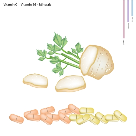 cilantro: Healthcare Concept, Illustration of Roots of Celery with Vitamin C, Vitamin B6 and Minerals Tablet, Essential Nutrient for Life.