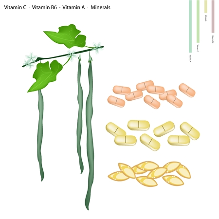 nutrient: Healthcare Concept, Snake Gourd or Trichosanthes Cucumerina with Vitamin C, Vitamin B6, Vitamin A and Minerals Tablet, Essential Nutrient for Life