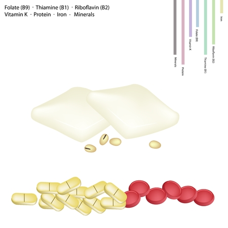 riboflavin: Healthcare Concept, Tofu Cheese or Bean Curd with Folate B9, Thiamine B1, Riboflavin B2, Vitamin K, Protein, Iron, Minerals Tablet, Essential Nutrient for Life.