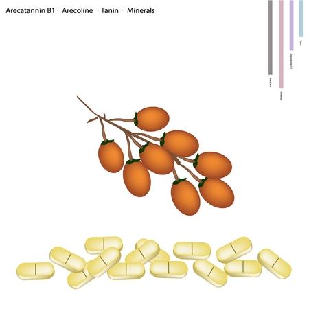 医療コンセプト、Arecatannin B1...