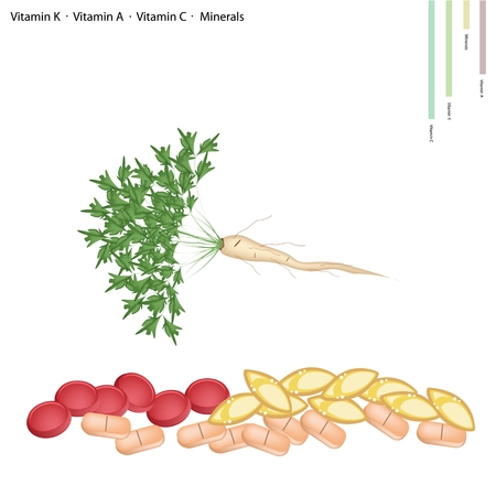 cilantro: Healthcare Concept, Illustration of Parsley or Parsnip with Root with Vitamin C, Vitamin A, Vitamin C and Minerals Tablet, Essential Nutrient for Life.