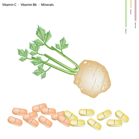 cilantro: Healthcare Concept, Illustration of Root of Celery with Vitamin C, Vitamin B6 and Minerals Tablet, Essential Nutrient for Life.