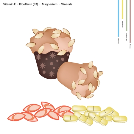 magnesium: Healthcare Concept, Illustration of Almonds Cupcake Muffin with Vitamin E, Riboflavin or B2, Magnesium and Minerals Tablet, Essential Nutrient for Life.