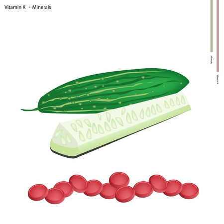 courgette: Healthcare Concept, Illustration of Marrows or Cucumbers with Vitamin K and Minerals Tablet, Essential Nutrient for Life.