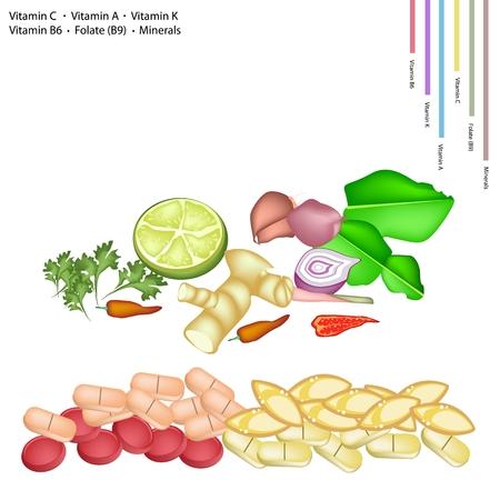 koriander: Egészségügy Concept, Lime, mogyoróhagyma, kaffir lime, Chili Pepper, citromfű, Blue Ginger, koriander C-vitaminnal, A, K, B6, B9 és ásványok Tablet, létfontosságú tápláléka az élet.