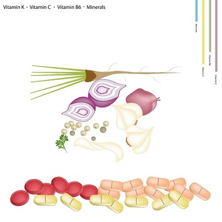 koriander: Egészségügy Concept, szegfűbors, mogyoróhagyma, fokhagyma és a koriander a K-vitamin, C, B6 és ásványi tabletták, létfontosságú tápláléka az élet.