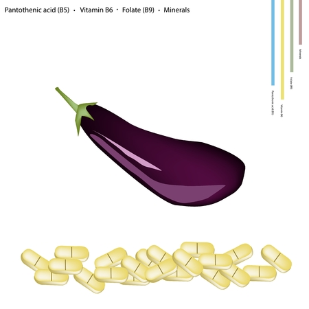 eggplant: Healthcare Concept, Fresh Ripe Eggplant with Pantothenic Acid B5, Vitamin B6, Folate B9 and Minerals Tablet, Essential Nutrient for Life. Illustration