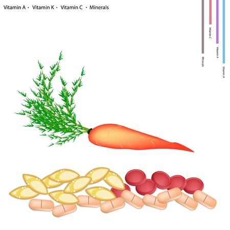 vitamin a: Healthcare Concept Illustration of Carrot with Vitamin A Vitamin K Vitamin C and Minerals Tablet Essential Nutrient for Life.