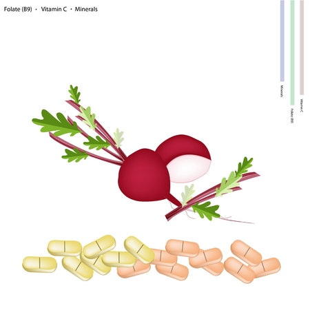 folate: Healthcare Concept, Illustration of Beetroot with Vitamin C, Folate or B9 and Minerals Tablet, Essential Nutrient for Life.
