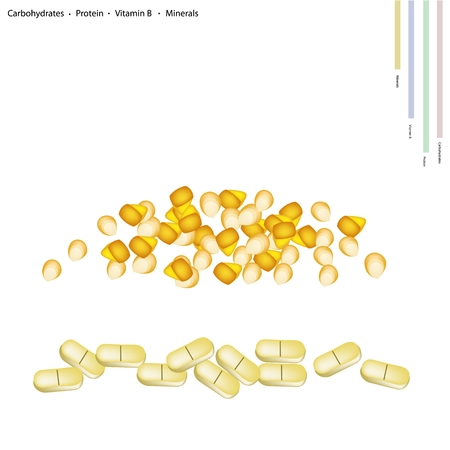 carbohydrates: Healthcare Concept, Illustration of Corns Seed with Carbohydrates, Protein, Vitamin B and Minerals Tablet, Essential Nutrient for Life. Illustration