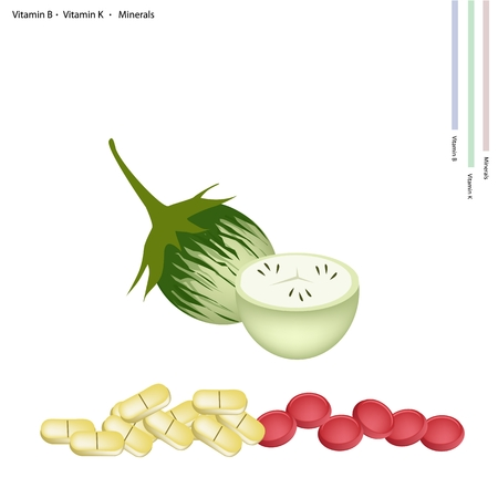 eggplant: Healthcare Concept, Illustration of Cockroach Berry or Green Eggplant with Vitamin B, Vitamin K and Minerals Tablet, Essential Nutrient for Life. Illustration