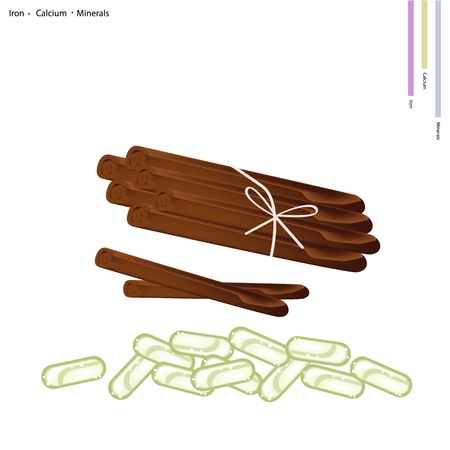 cinnamon sticks: Healthcare Concept, Illustration of Dried Cinnamon Sticks with Iron, Calcium and Minerals, Essential Nutrient for Life. Illustration