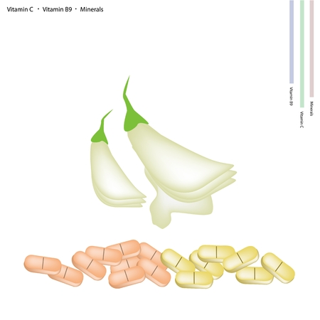 humming: Healthcare Concept, White Sesban Agasta or Vegetable Humming Bird Flowers with Vitamin C, Vitamin B9 and Minerals Tablet, Essential Nutrient for Life.