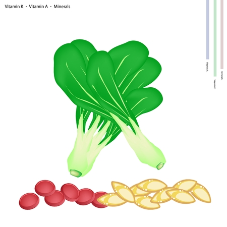 medicare: Healthcare Concept, Illustration of Bok Choy, with Vitamin K, Vitamin A and Minerals Tablet, Essential Nutrient for Life. Illustration