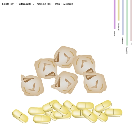 thiamine: Healthcare Concept, Illustration of Dried Garbanzo Beans or Chickpea with Folate B9, Vitamin B6, Thiamine B1, Iron and Minerals Tablet, Essential Nutrient for Life.
