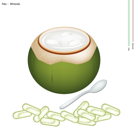 coconut: Healthcare Concept, An Illustration of Sweet Coconuts Jelly in Coconut Shell with Fats and Minerals Tablet, Essential Nutrient for Lift.