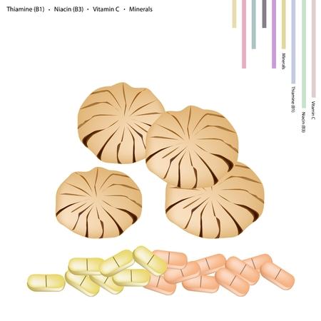 Thai dessert: Healthcare Concept, Illustration of Sandoricum Koetjape, Santol or Krathon with Thiamine B1, Niacin B3, Vitamin C, Minerals Tablet, Essential Nutrient for Life. Illustration