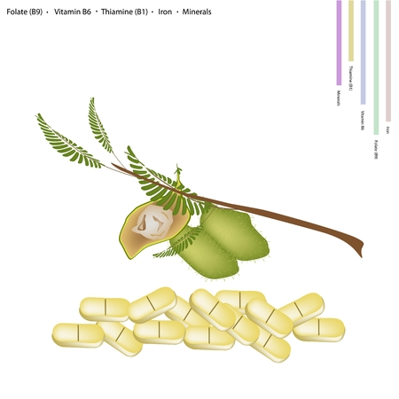 b1: Healthcare Concept, Illustration of Garbanzo Beans or Chickpea with Folate B9, Vitamin B6, Thiamine B1, Iron and Minerals Tablet, Essential Nutrient for Life. Illustration