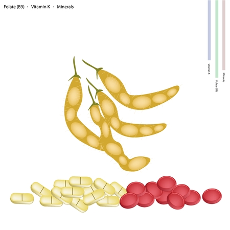 soybean: Healthcare Concept, Illustration of Dried Soybean or Edamame Pods with Folate B9, Vitamin K, Manganese and Minerals Tablet, Essential Nutrient for Life.