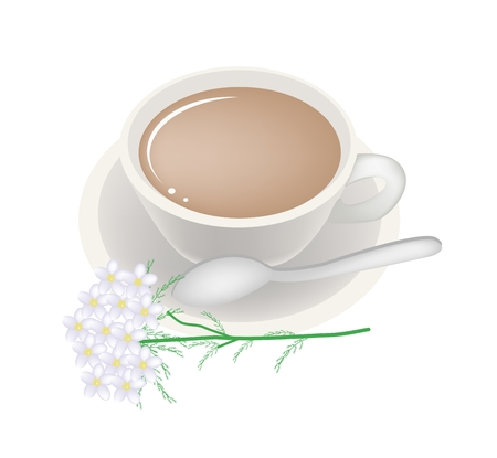 asteraceae: Beautiful Flower, Illustration of Yarrow Tea in A Glass Cup with White Yarrow Flowers Isolated on White Background. Illustration
