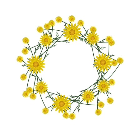 osteospermum: Symbol of Love, Illustration of Crown or Laurel Wreath of Fresh Yellow Daisy Flowers Isolated on White Background.